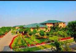 Cathedral Vidya School