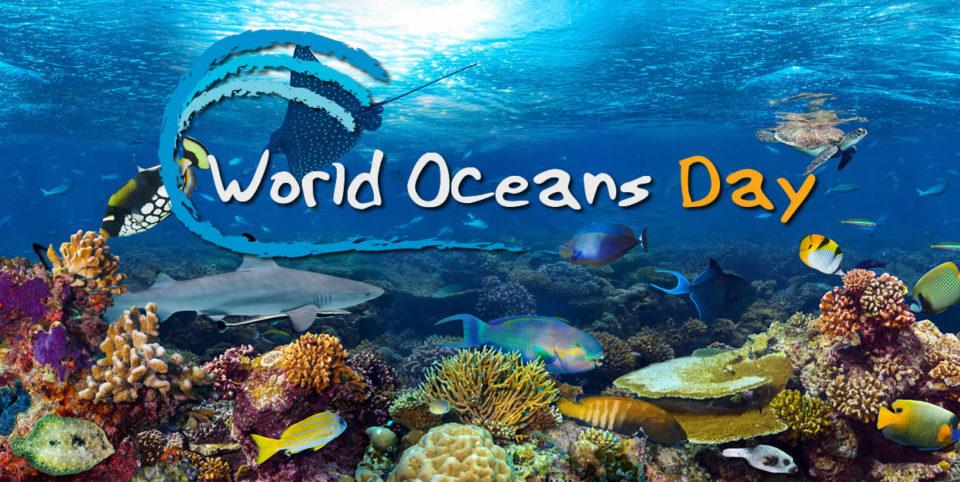 Resultado de imagen para world ocean day images