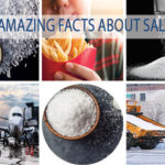 AMAZING FACTS ABOUT SALT