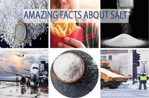 AMAZING FACTS ABOUT SALT