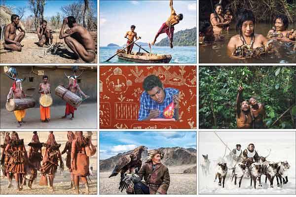 The-Perishing-Indigenous-Tr